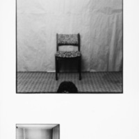 pf 6.jpg